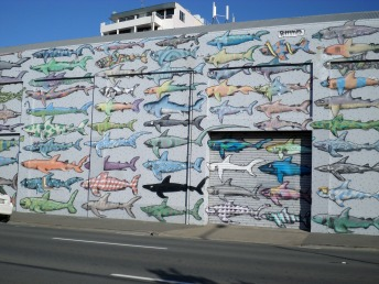 A neat anti shark-finning mural