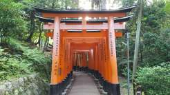 Kyoto: 1000 Torii gates leading up Mount Inari
