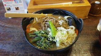 Fuji region: udon noodles are fatter and chewier, an absolute delight.