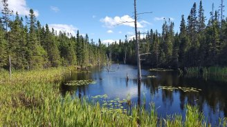 Lakes in Northern Ontario