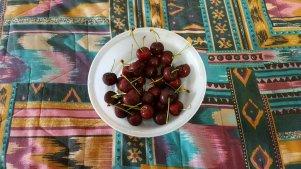BC cherries
